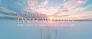 Beyond the Landscape of Japan